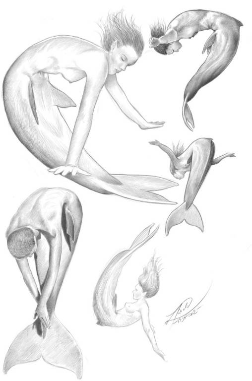 Diving mermaids